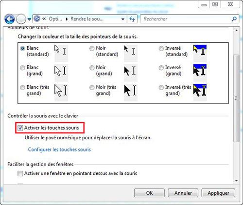 Activer les touches souris windows 7