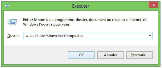 executer windows 8