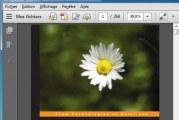 Copier une image a partir d'un document pdf